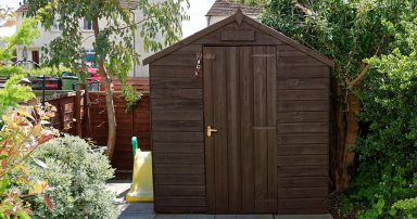 Shed in a backyard
