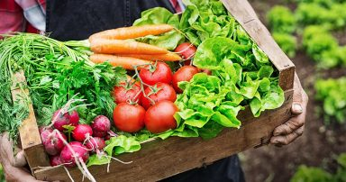 Box of freshly picked vegetables